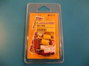 画像1: Malossi クラッチスプリング(デルタクラッチ用)